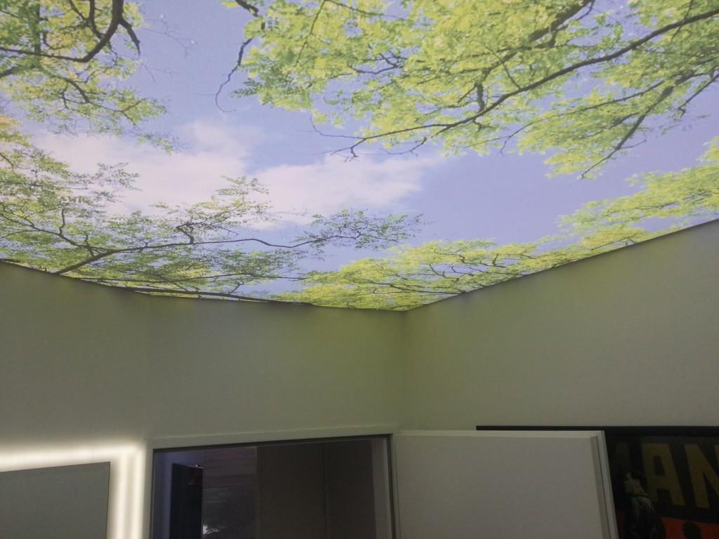 натяжные потолки природа