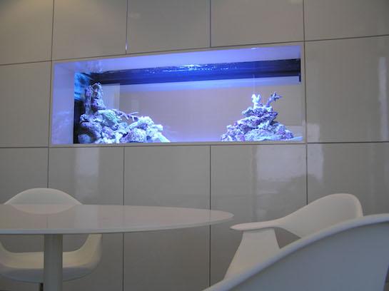 аквариум встроенный